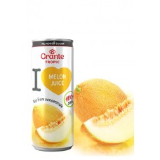 Сок Grante Tropic Melon Juice (250 мл)
