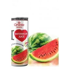 Сок Grante Tropic Watermelon Juice (250мл)